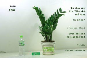 Cần chú ý những điều kiện tự nhiên để cây sinh trưởng phát triển tốt